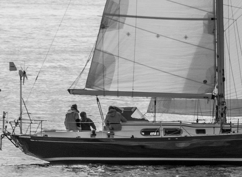 West Wind II races in the RVYC Lipton's Cup